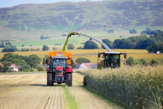With many thousands of acres heading into anaerobic digester plants this year, it's time to harvest rye for that renewable industry. Our photographer, Emma Cheape, caught the Brown family's contracting outfit, from Skeddoway, Fife, harvesting