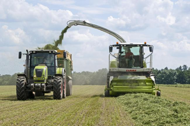 First cut silages in general have analysed with higher dry matters, with higher sugar contents