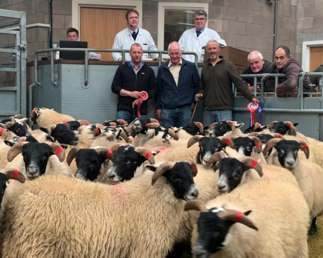 Champion pen of Blackface lambs from Blackmountain Farms pictured from left, Sandy Dickson, David Bartlett and judge Alan Taylor