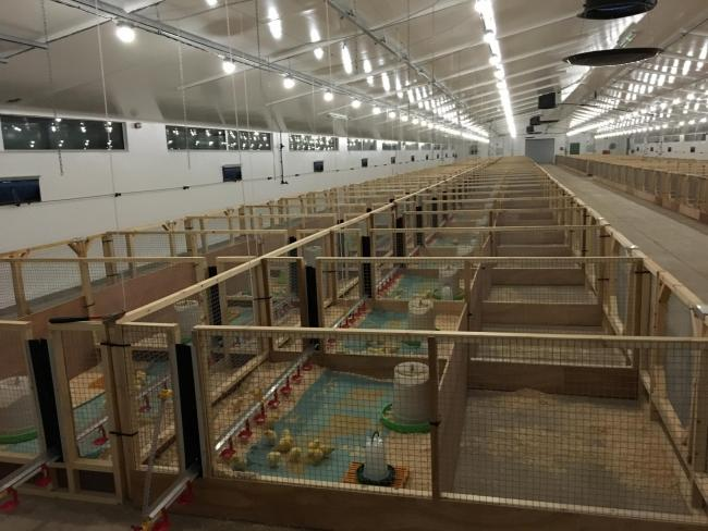 INSIDE THE Allermuir Avian Innovation and Skills Centre