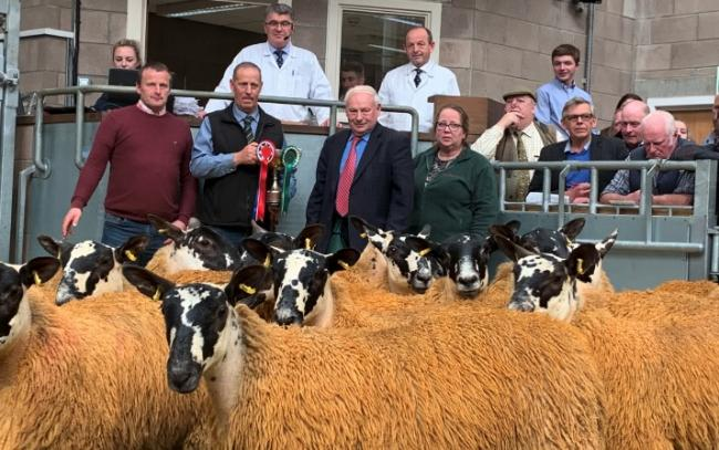 Champion pen of Scotch Mule ewe lambs from M Smyth, Sheilds. (L-R) M Smyth, J McDougall (shepherd), A Ross (judge), J Connor.