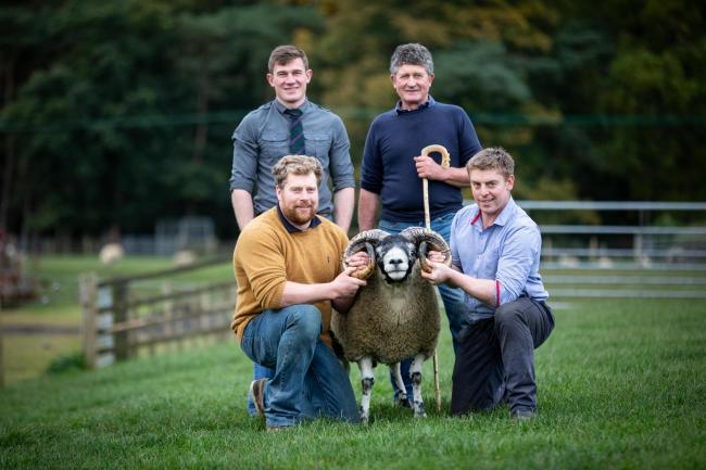Record priced shearling ram at £100,000 from Alastair and David Macarthur, Nunnerie, held by shepherds Derek Brown and Craig Thornborrow