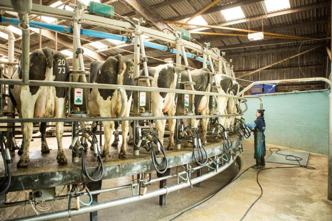 Increasing milk yields and or herd sizes does not necessarily equate to higher profits