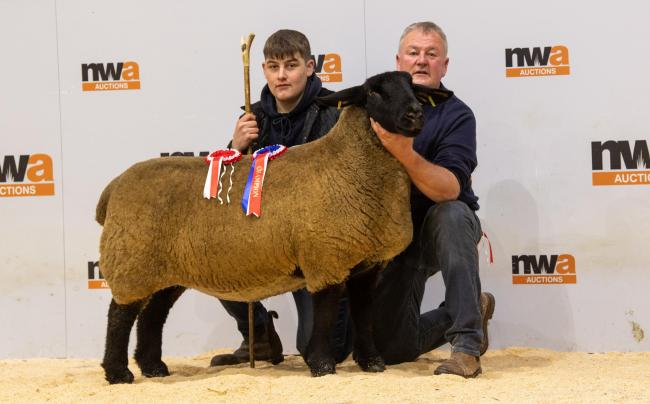 Overall Champion and highest priced Suffolk from Richard Batty, pictured with (L-R) judge, Matthew Horner and vendor Richard Batty.