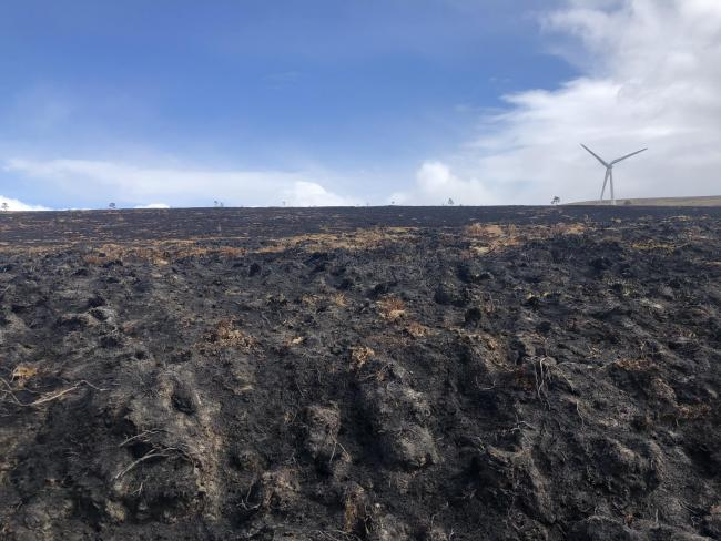 The Moray wildfire of 2019 left miles of devastated land in its wake