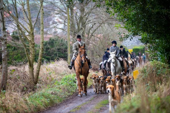There was a strong turnout at Fife Foxhounds' New Years Day Meet, held at Ceres, Fife  Ref:EC0101202743