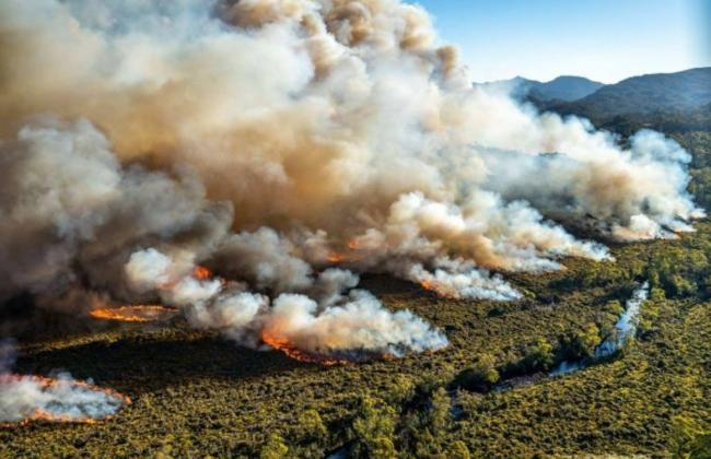 Over half a billon animals have been killed and 16 millions acres of land destroyed by the raging fires in Australia