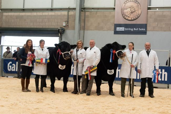 winning the overall Aberdeen Angus championship was McCornick Pathfinder from the McCornicks and reserve champion was Stouphill Maimus Pride from the Allens(L-R) Isla Shaw from Sponsors Galbraith, Gemma, Kate and Martin McCornick with Ruth and Dallas All