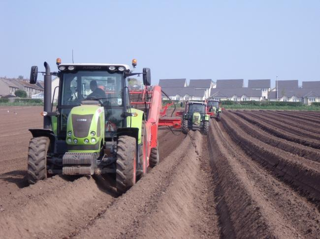 Planting in optimum conditions is better than damaging soils in an effort to get crop in the ground too early