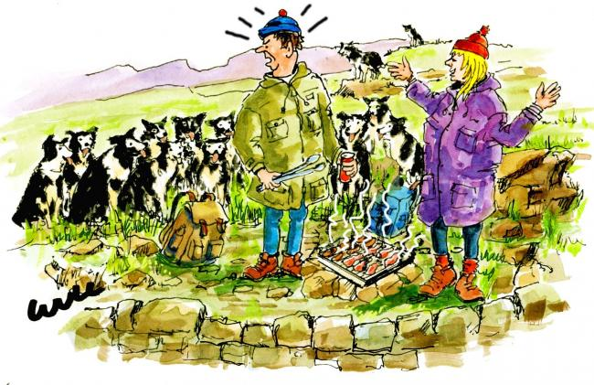 """You and your nice spot for a barbie - there's going to be a lot of unhappy shepherds looking for their dogs!"""