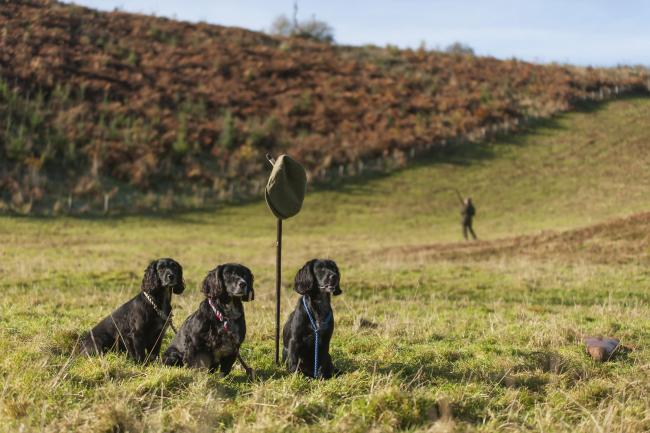 Preparations are underway for the shooting season (Pic: Jonathan McGee)