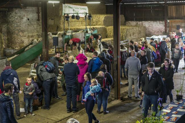 A busy Open Farm Sunday event at Hilton of Aldie, Kinross, in June 2019