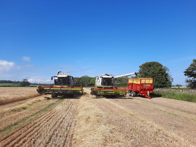 Father and son James and Stuart McClymont contractors, combining winter barley on July 24, near Port Logan, Stranraer