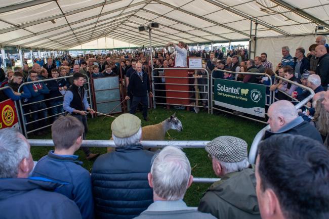 A packed ring at Kelso last year, won't be the same this year Ref:RH130919098