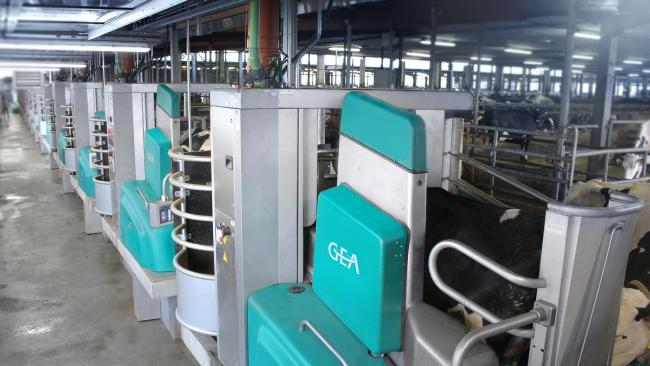 GEA new robot milkers have been installed Agrar GmbH Krieschow in Germany