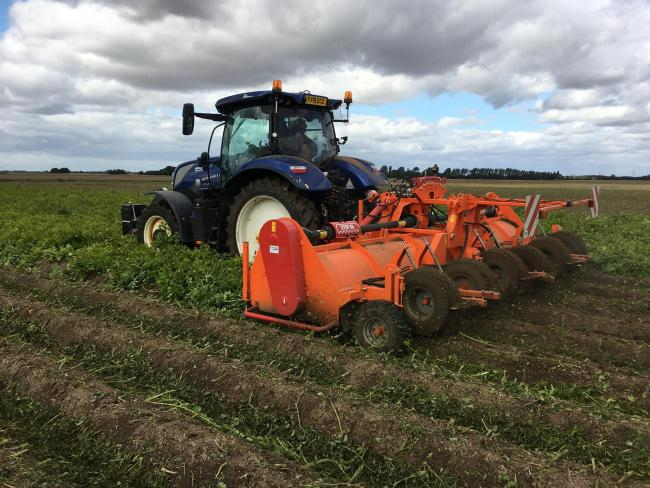 AHDB field-based research and demonstrations on desiccation without diquat started in 2018 and has taken place on eight trial sites across Britain