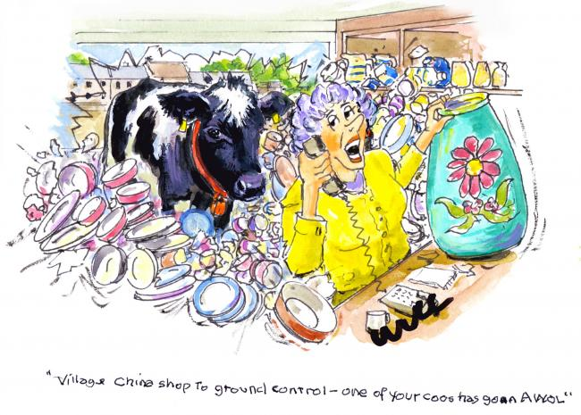 CHINA SHOP to Ground Control – has one of your cows gone offline?