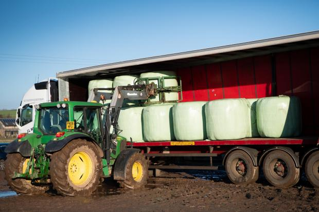 The Scottish Farmer: David Wilkie loading some Haylage on to one of the curtainside trailers Ref:RH281120141 Rob Haining / The Scottish Farmer...