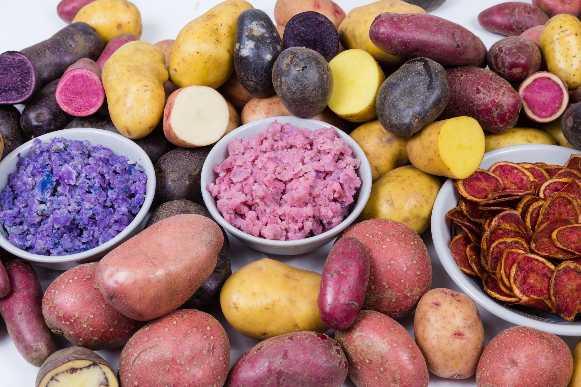 All the colours of the rainbow - a mixture of heritage potatoes and some tasty delights they can provide