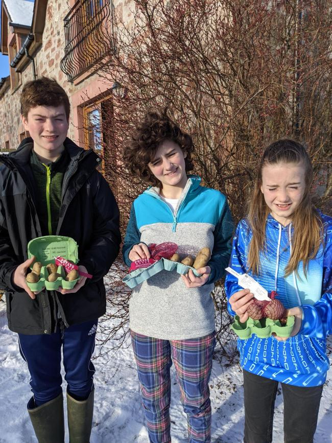 Spuds that we like – the Skea children with their chosen varieties. Calum Skea (left) opted for Dunbar Standard as his top pick (his mother has Dunbar family ancestry); Catriona features her own name, Catriona; while Morag preferred Edzell Blue