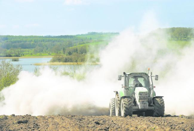 Spreading lime to raise soil pH can help make more efficient use of bagged fertilisers