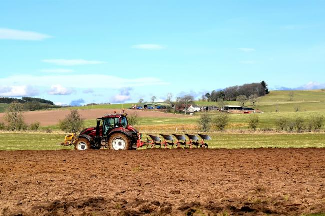C and L Wylie ploughing in grass at Kingoldrum, Kirriemuir (Pic: Sarah Wylie)