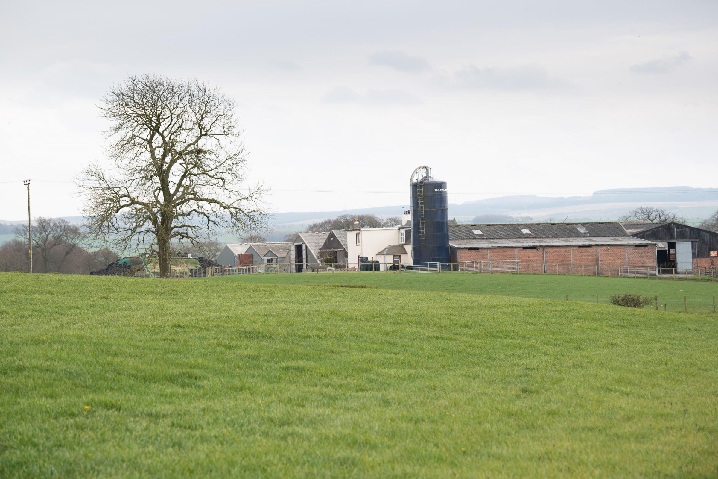 Knowe farm near Ochiltree home to the Templeton family Ref:RH260421352 Rob Haining / The Scottish Farmer...