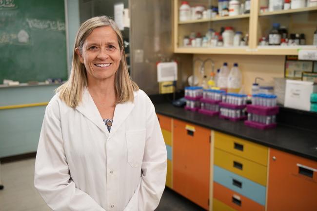 Dr Karen Beauchemin