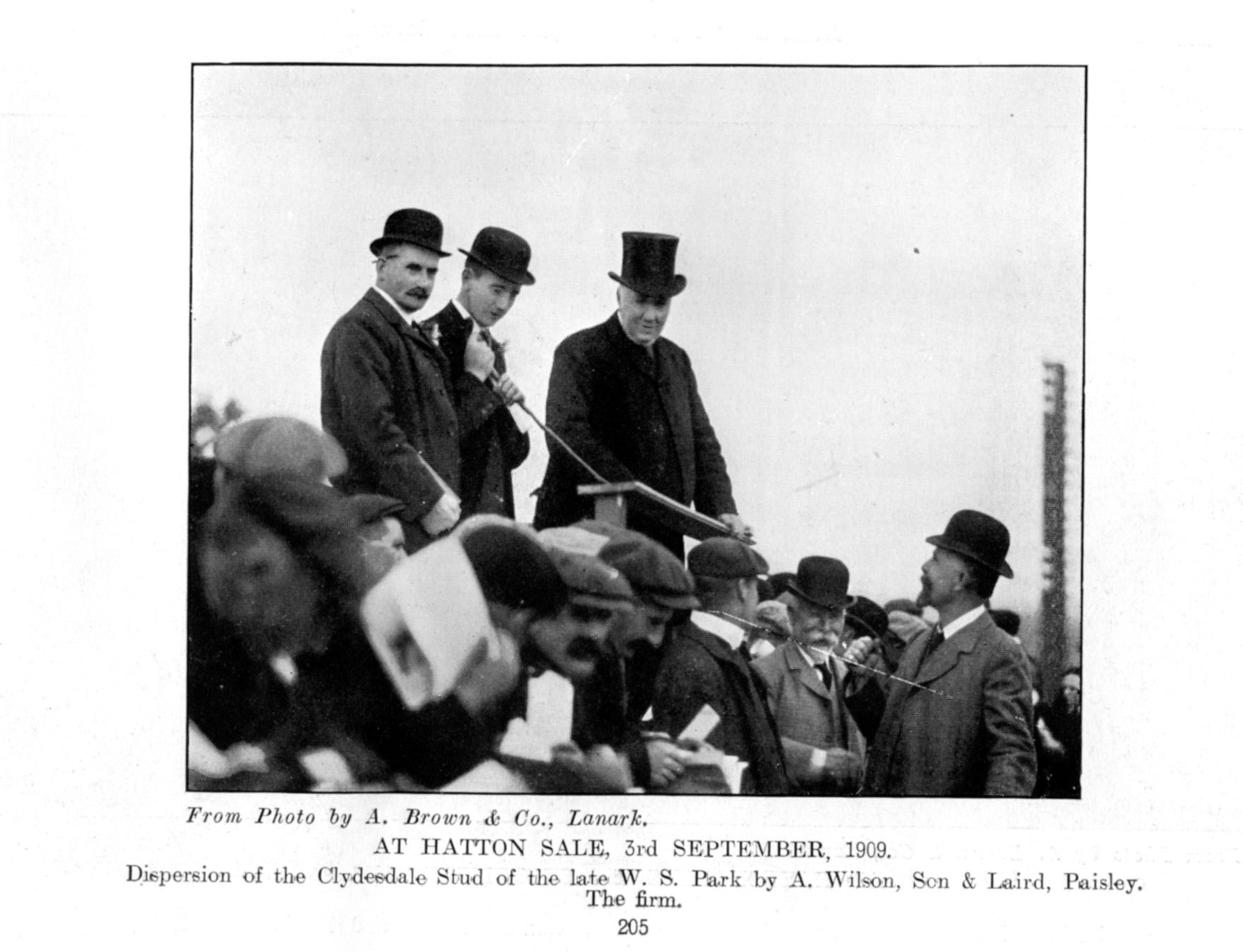The Hatton sale of September, 1909 -- the dispersal of the Clydesdale stud of the late WS Park, by A Wilson, Sone and Laird, Paisley