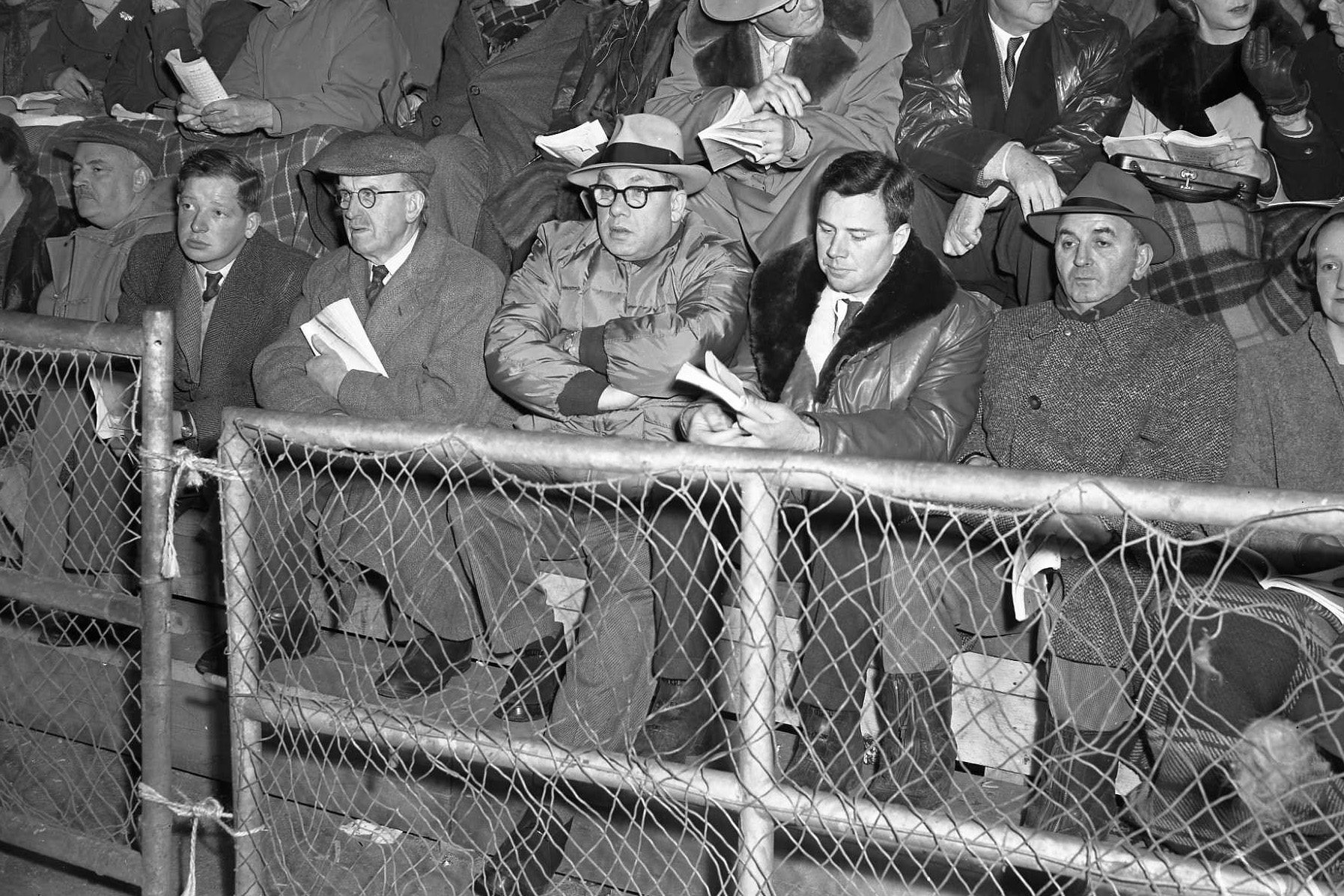 Some gentlemen watching the 1956 Beef Shorthorn show and the Perth Bull Sales