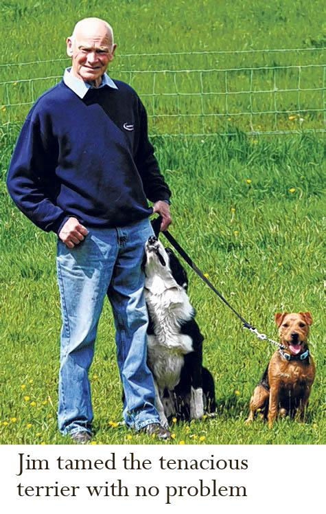 Scotland's dog whisperer shows who is boss