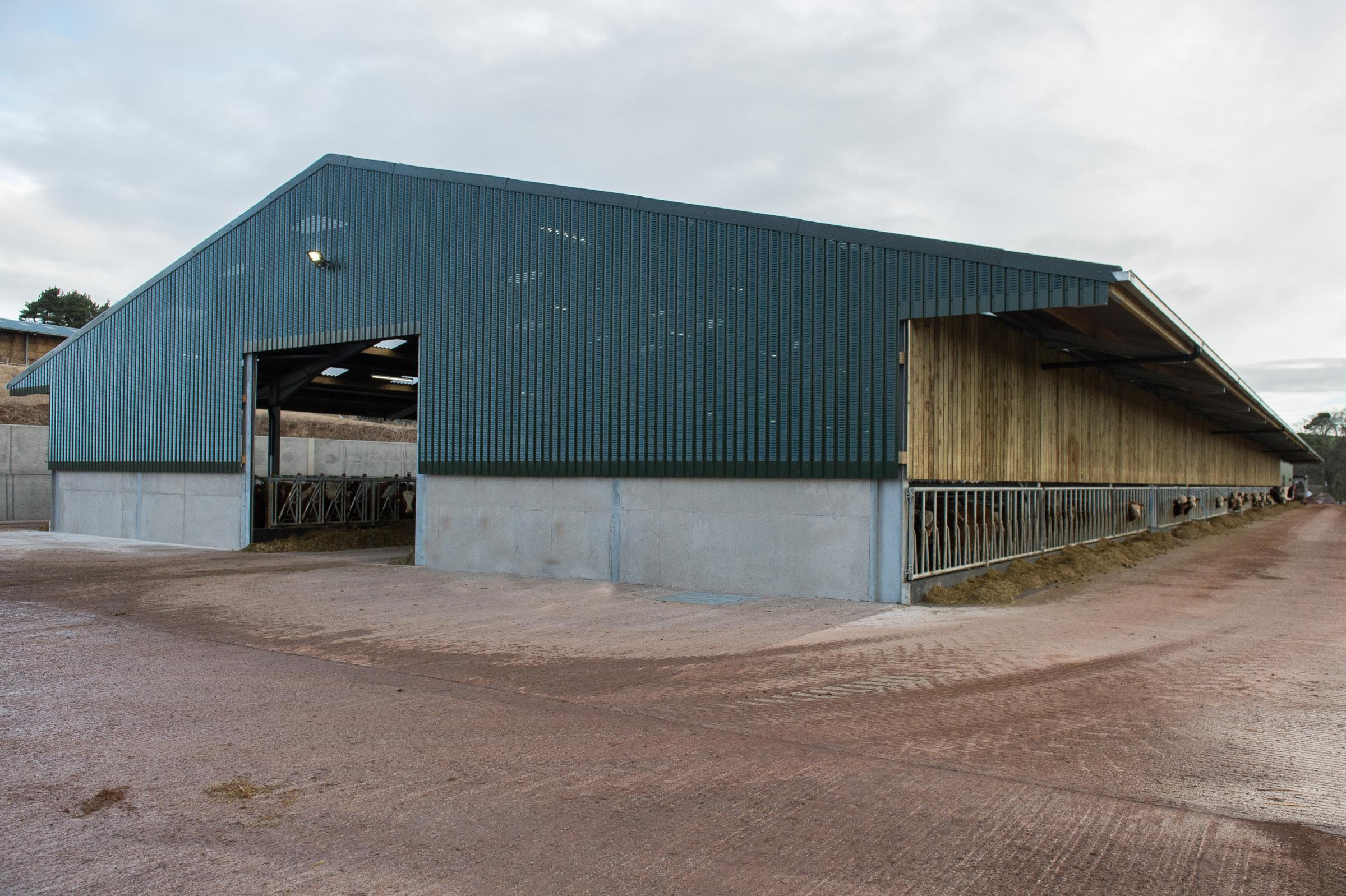 An exterior view of the new shed at Aikengall, spanning 300ft x 70ft