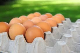Still huge opportunities for egg and broiler production