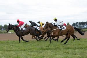 The Scottish Farmer: Photo Galleries - Fife Point to Point