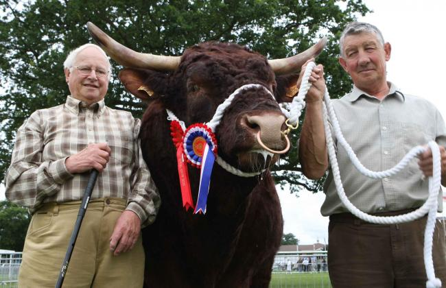 Brian Walling (left) and his cousin Bob Hudson with their champion Salers bull Vaillant
