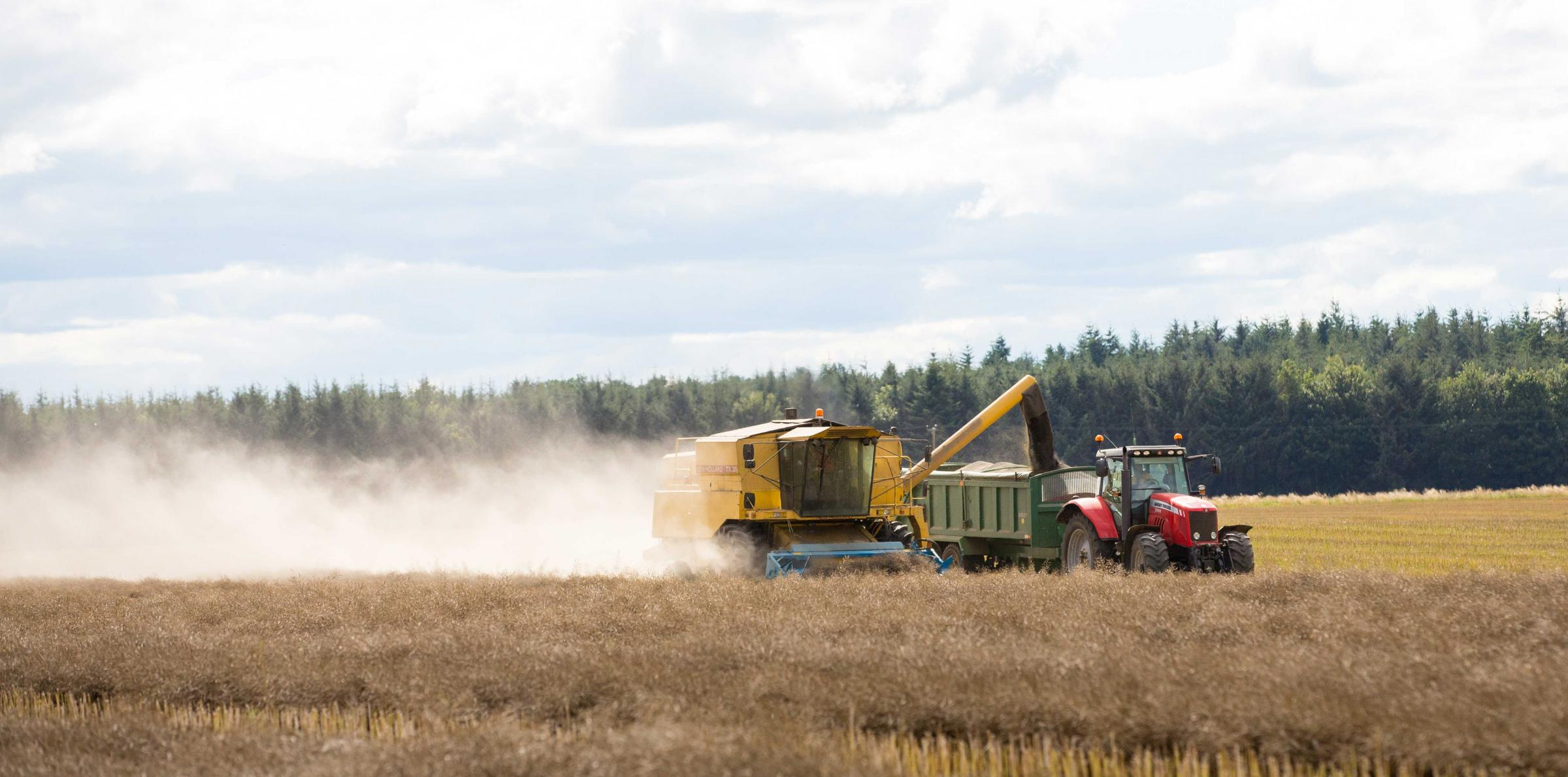 Combines move on to OSR
