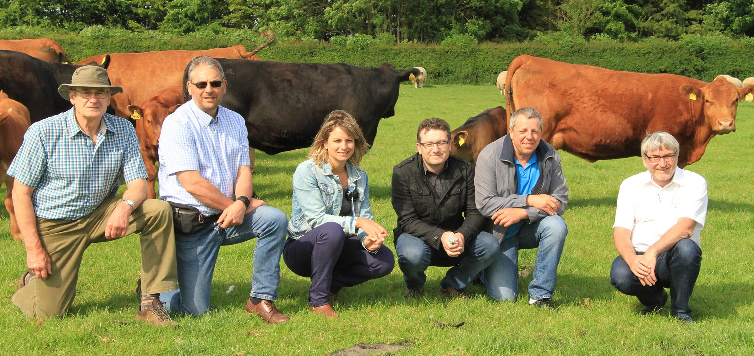 French representatives for Bovinext visited Stabiliser Cattle Company's headquarters and JSR's Givendale Stabiliser herd to finalise an initial five5-year agreement to bring UK Stabiliser genetics into France through semen, embryos and live cattle exp