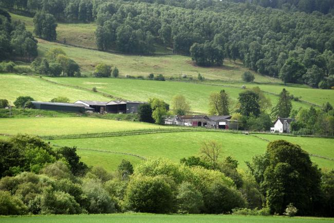 Bolfracks Estate in Perthshire is on the market through John Clegg and Co and Strutt and Parker