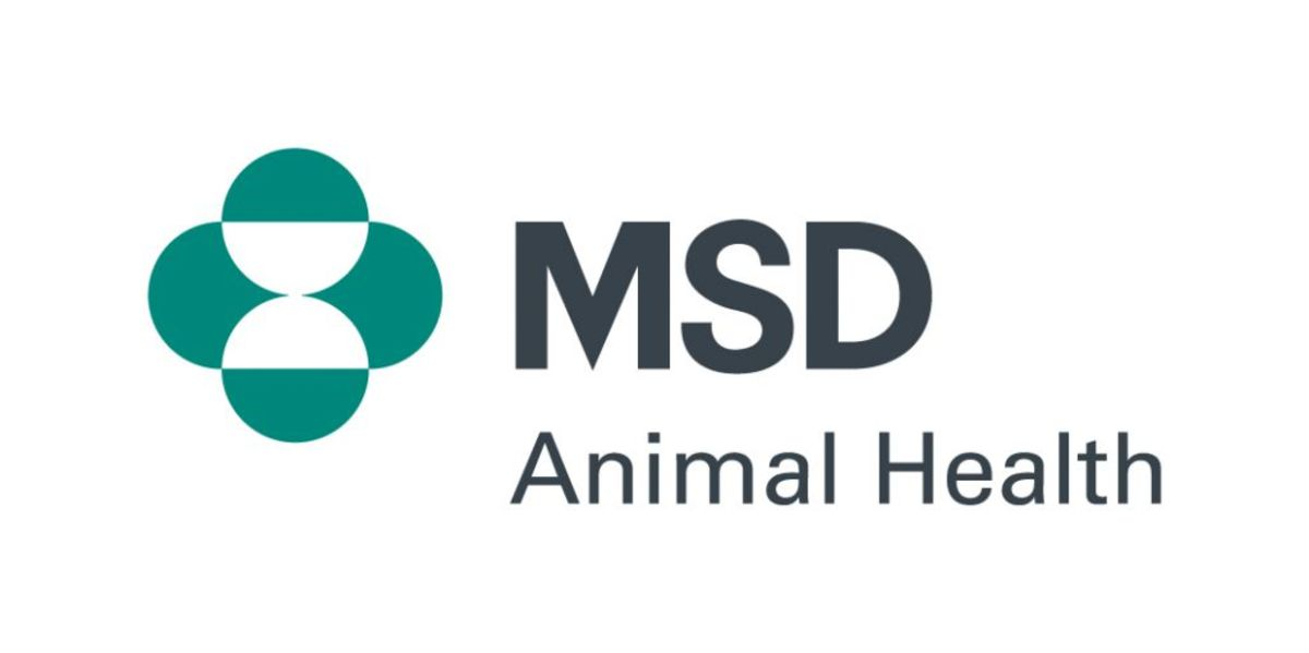 It's likely that an insidious disease was a significant cause of barrenness or abortion in ewes last year, according to results from MSD Animal Health
