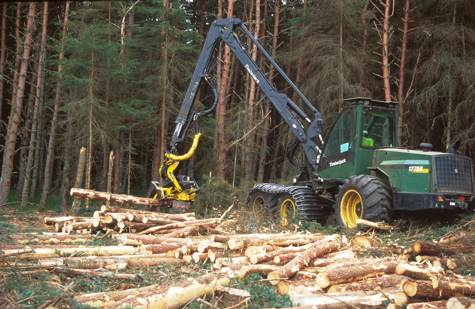 Scotland's future supply of wood in under political scrutiny