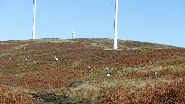 Beaters lined out below turbines marching moorland in Scotland