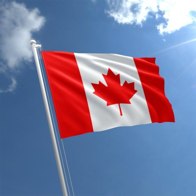 Manufacturing beef from the UK can now be exported to the lucrative Canadian market