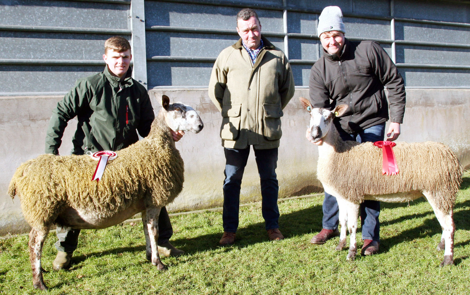 Robin Booth pictured right with the champion, George Hamlet and John Stott's reserve champion, an in-lamb ewe