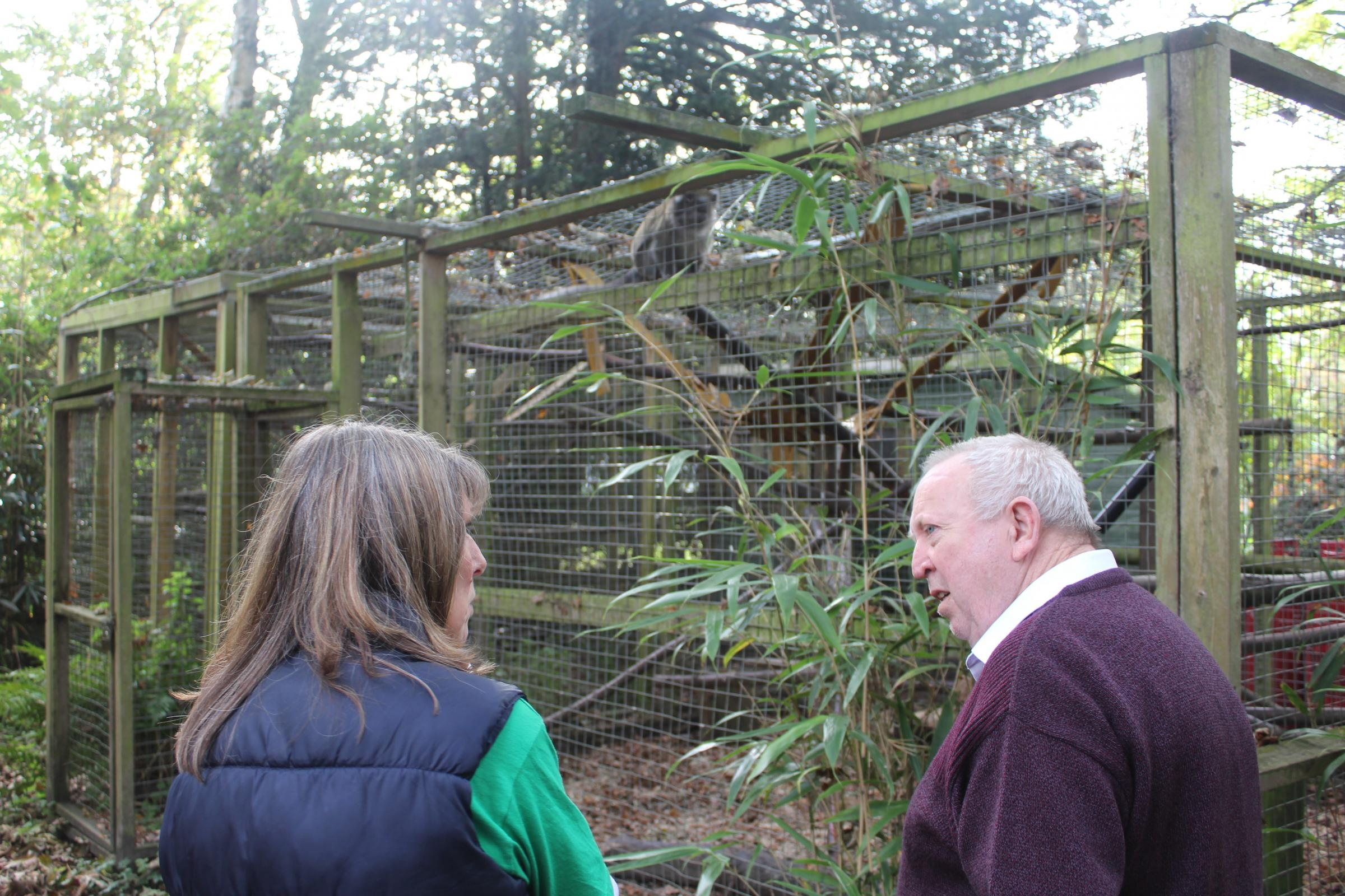 Keith Taylor MEP with Sharon Shaw, founder of the Lakeview Monkey Sanctuary, discussing the campaign to ban primates as pets in the UK