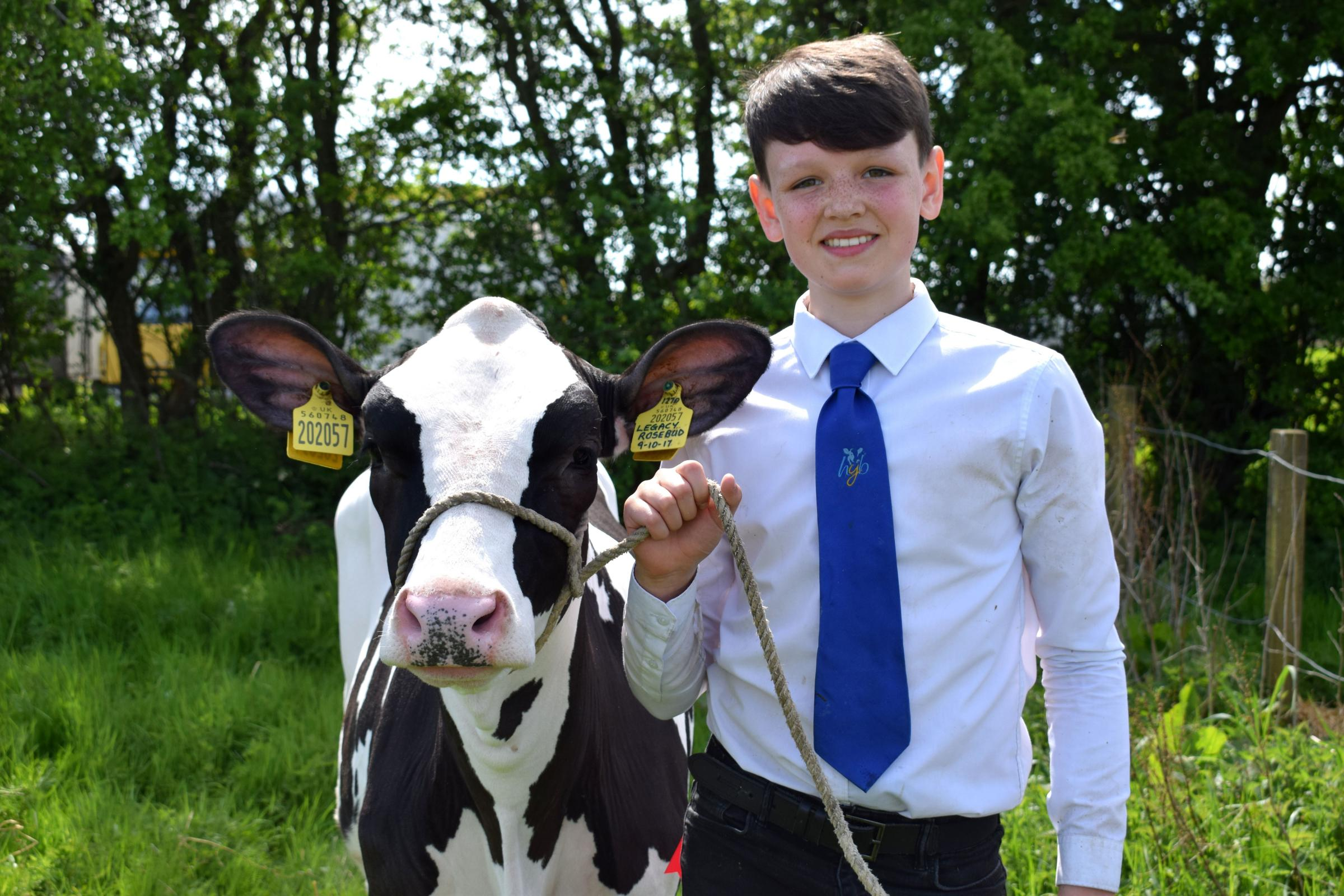 HAPPIER TIMES Mark Bryson, from Dykehead, Lesmahagow, pictured with his champion Holstein calf, Legacy Rosebud at a sunny Stonehouse Show last May