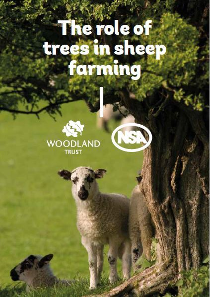 TREE TIPS the advice booklet produced by NSA and the Woodland Trust