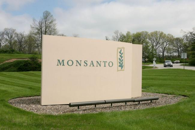 Monsanto continues to receive abuse regarding herbicide glyphosate