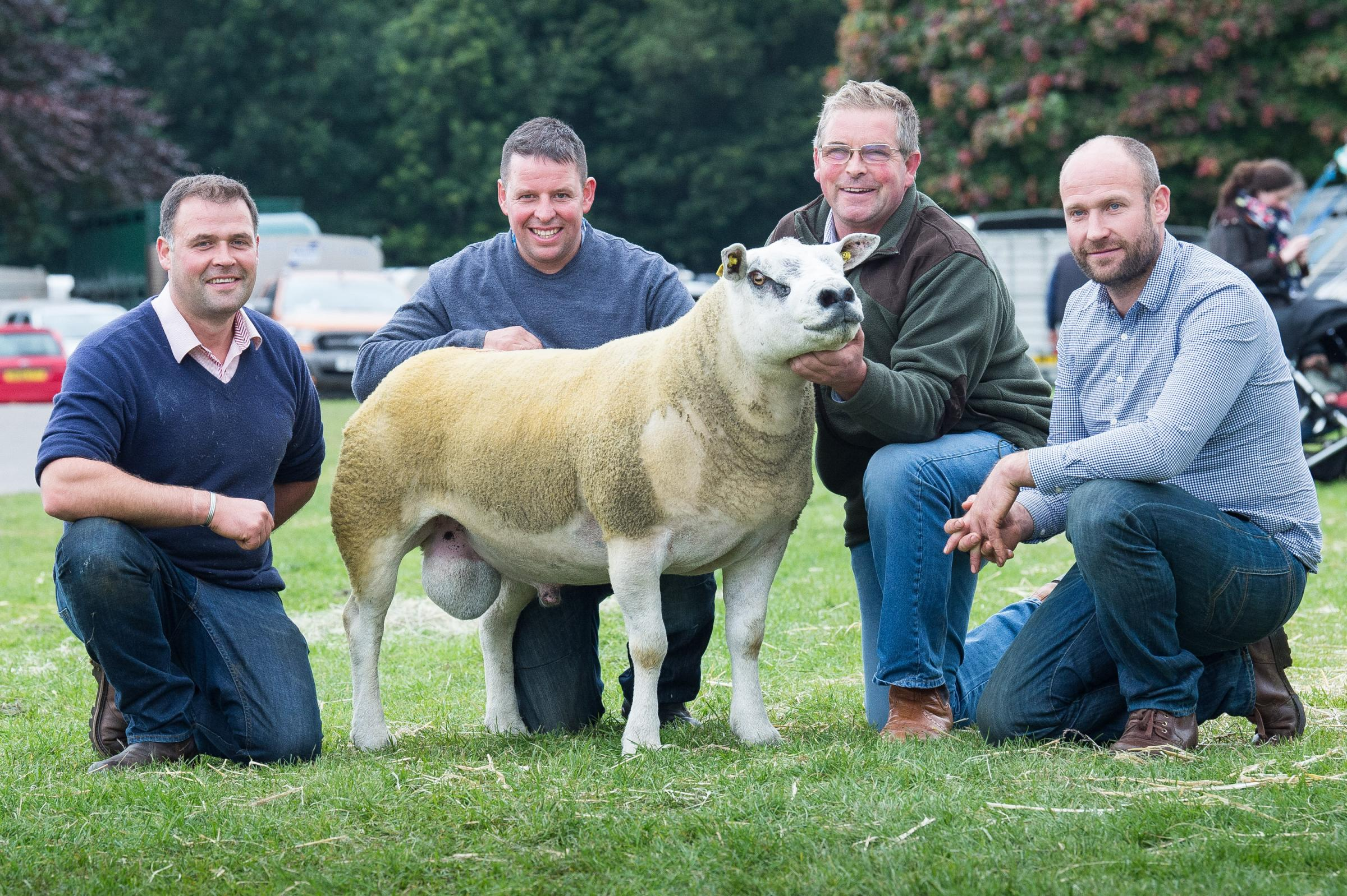 The Clark family of Garngour – Alan, David and Andrew – with their £29,000 shearling, alongside new owner, Paul Slater. For our full report from Kelso Ram Sales, see page 16 Ref:RH140918045