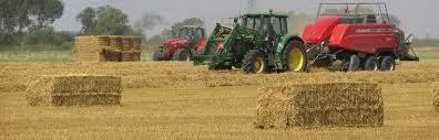 Fodder prices are slowly but surely heading south