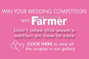 Wedding Competition Entries